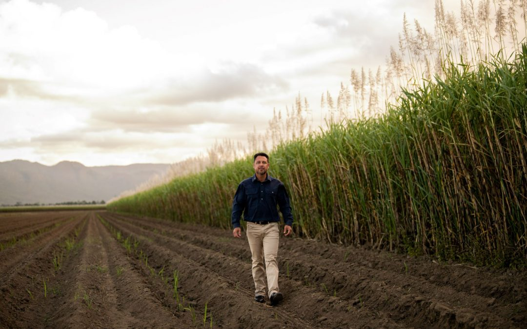 SCIENCE IS UNSETTLED BUT GROWERS BEAR THE BRUNT